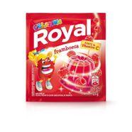 0535846316652baef61b84f700bda54b_gelatina-em-po-royal-framboesa-25g---gelatina-em-po-royal-framboesa-25g_lett_1