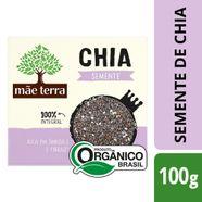 Semente-de-Chia-Mae-Terra-Organica-100g