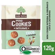 Cookies-Organico-Integral-Mae-Terra-Castanha-Do-Para-E-Coco-120-G